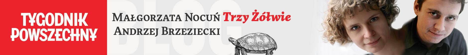 Trzy żółwie